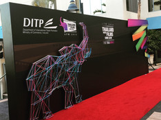 Event Red Carpet Wall
