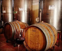#cascinasansiro #langhe #monferrato #piemonte #wine #redwine #barberadasti #barbera  #madeinitaly #b