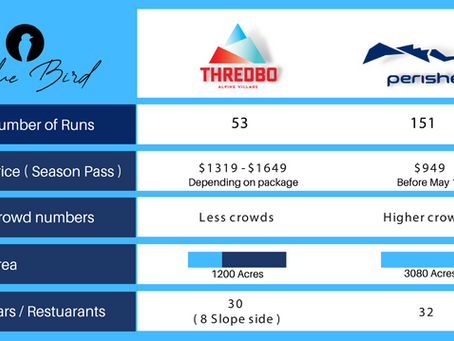 Perisher vs Thredbo: Where should I ride this year?