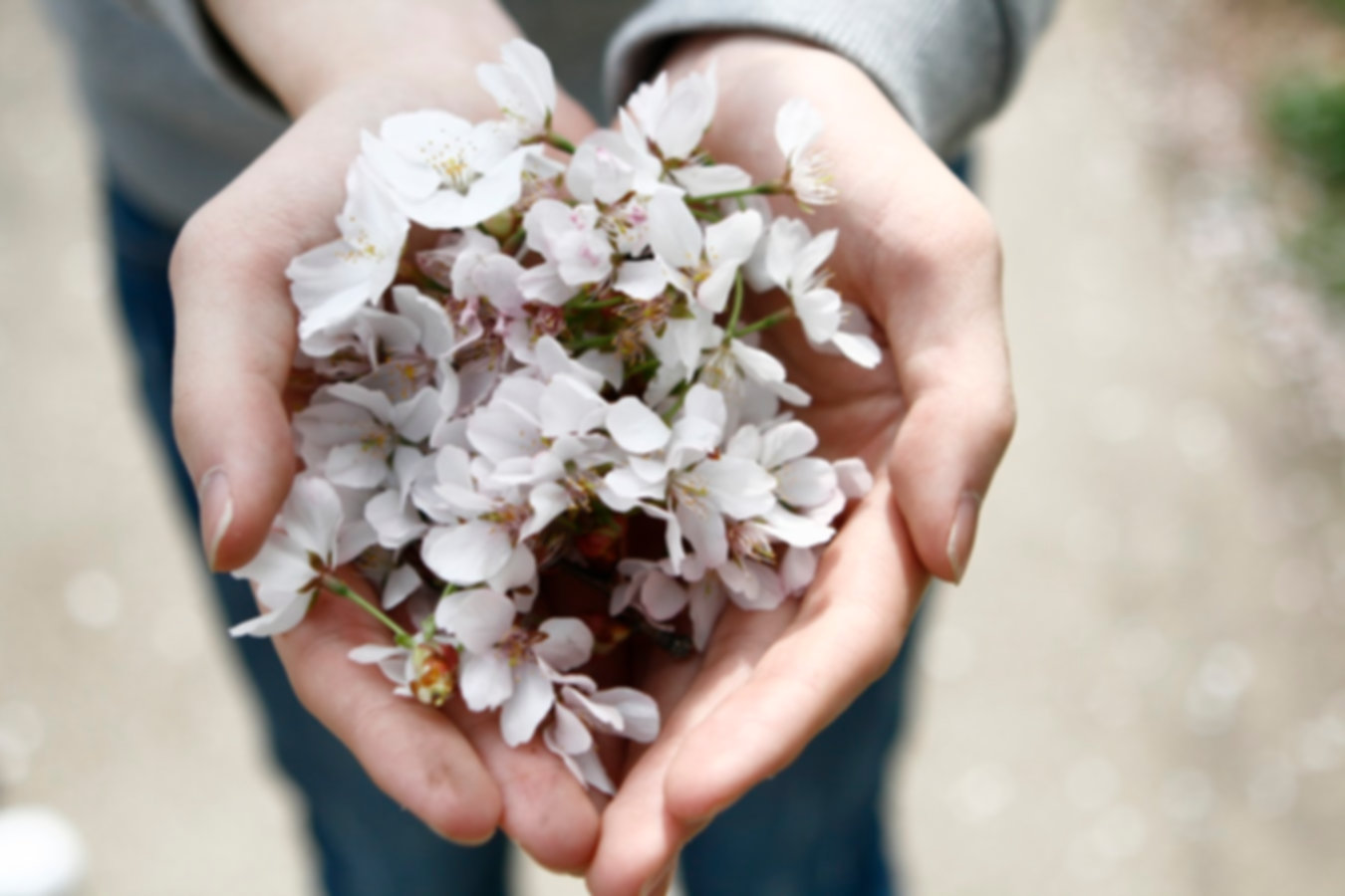 picture of giving flowers.jpg