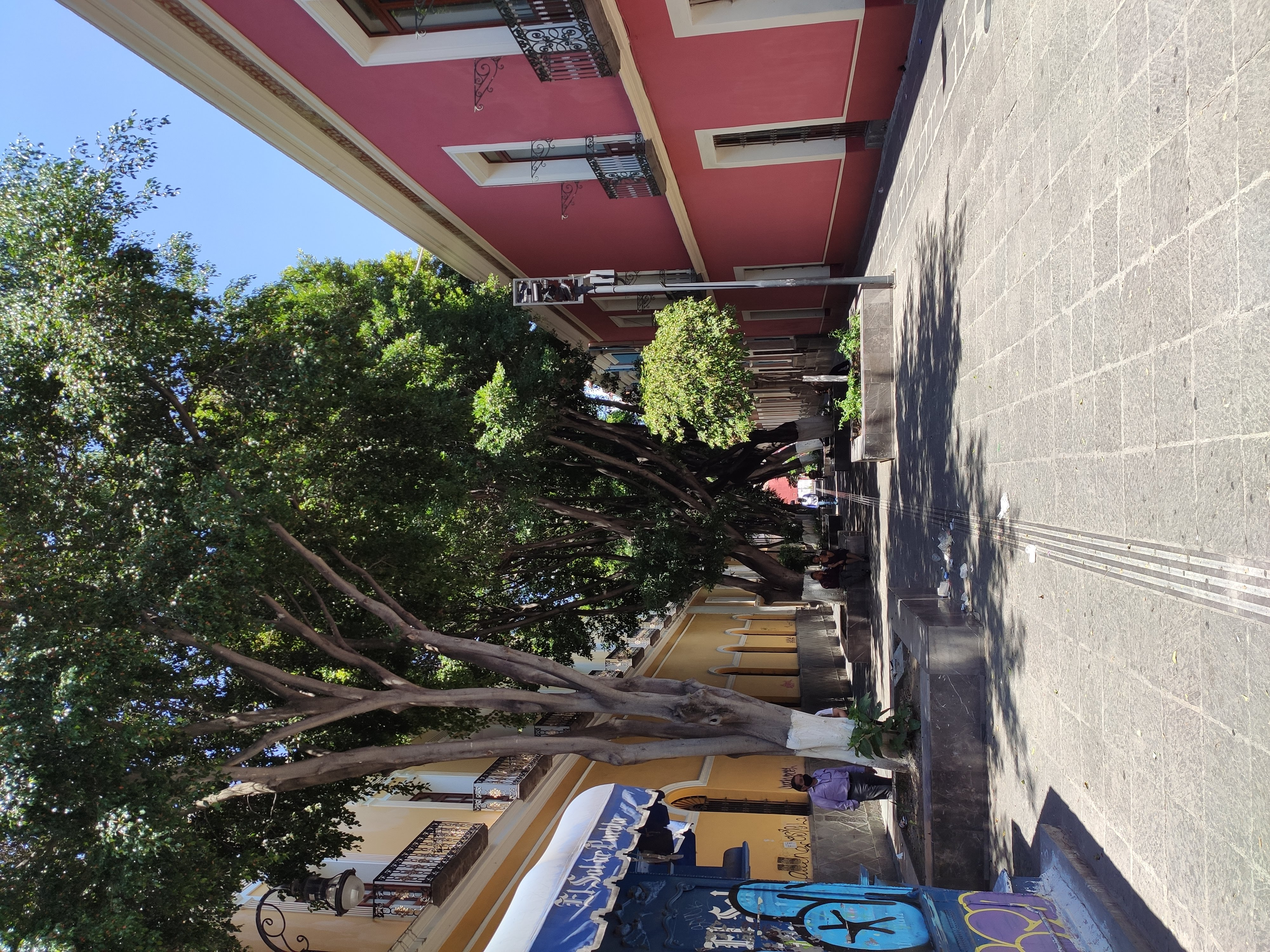 Carolino - A donde van los días