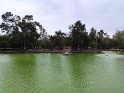 Ecologico - El agua