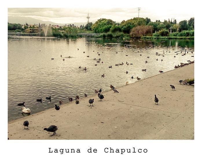 Chapulco.jpg