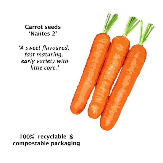 Carrot Seeds 'NANTES 2' ORGANIC
