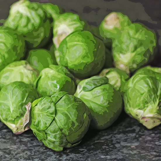 Brussels Sprouts seeds 'GRONINGER' ORGANIC