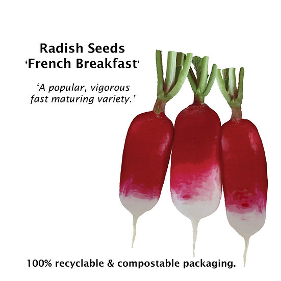 Radish Seeds 'FRENCH BREAKFAST' ORGANIC