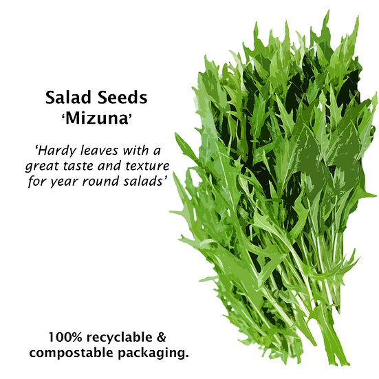 Mustard Seeds 'MIZUNA' ORGANIC