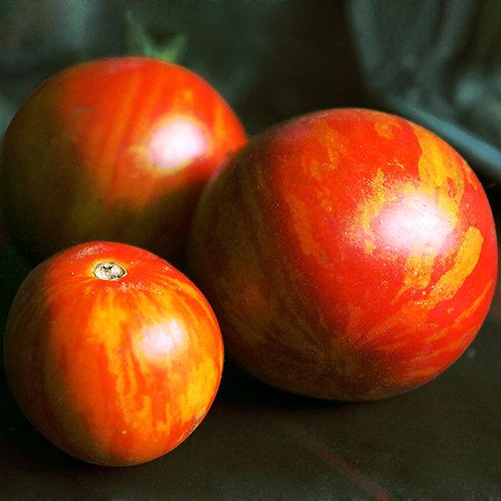 Tomato Seeds 'TIGERELLA' ORGANIC