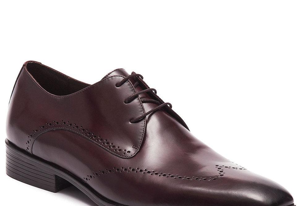 Sapato Brogue Pinhão - Ricardo Almeida
