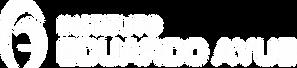 Logo Instituto Eduardo Ayub.png