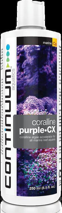 Coralline Purple CX