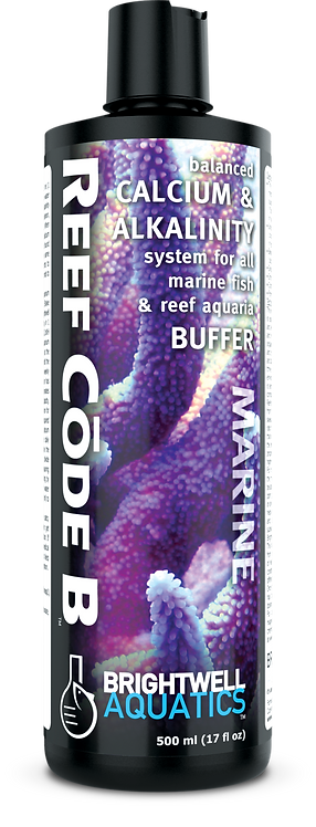 Reef Code B