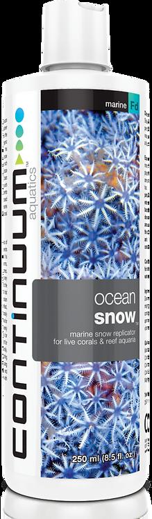 Ocean Snow