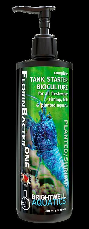 FlorinBacter One