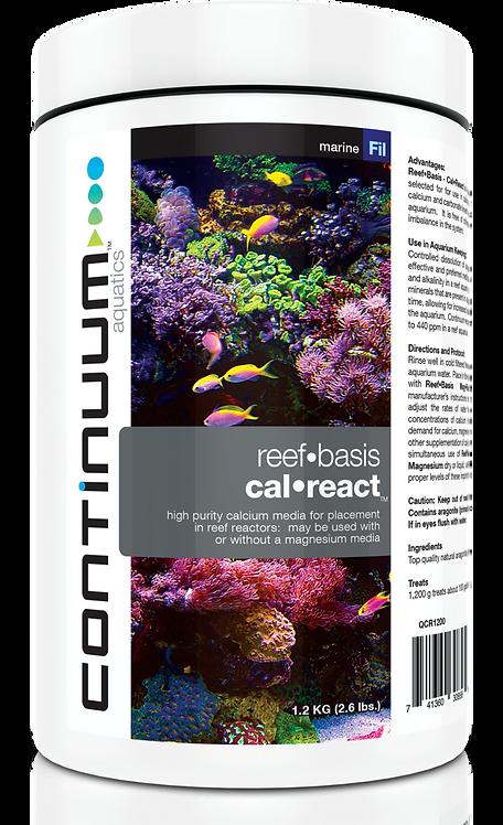 Reef Basis Cal React