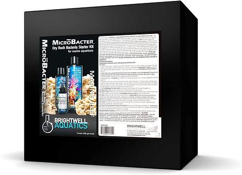 MicroBacter Dry Rock Bacteria Starter Kit