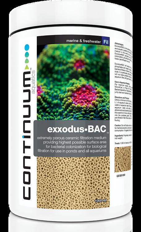 Exxodus BAC