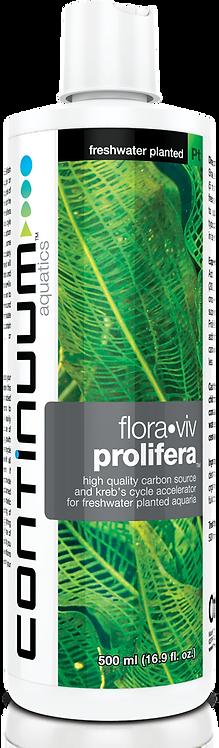 Flora Viv Prolifera
