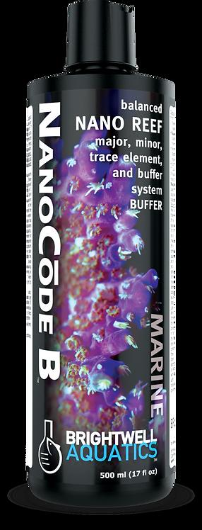 NanoCode B