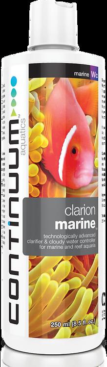 Clarion Marine