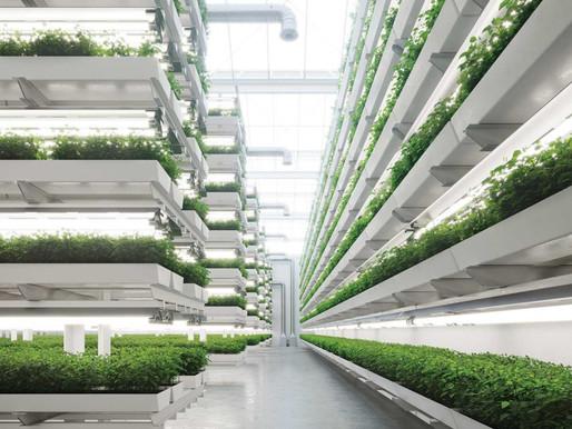 AeroFarms, vertical farming start-up, going public in a $1.2 billion SPAC deal