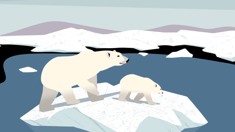 Arctic Refuge Defense Campaign