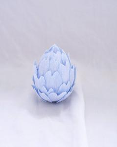 Blue Artichoke