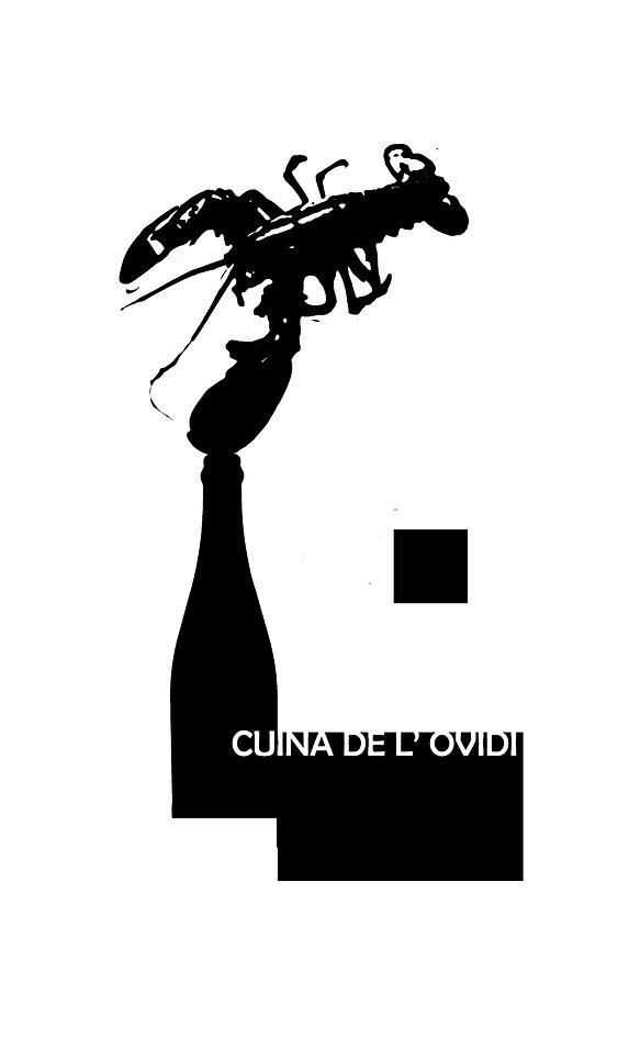 CUINA DE LOVIDI.jpg