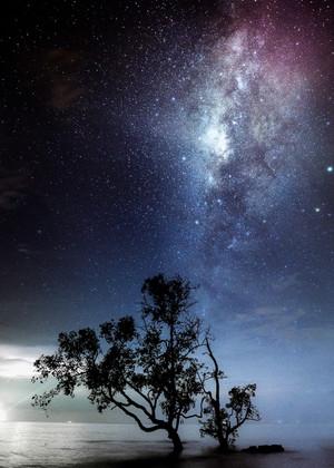 Milky Way in Malaysia - AllenTian.com.jpg