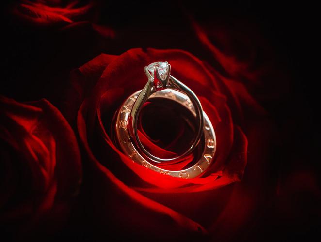 Macro Ring Photography