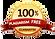 100% plagiarism free guarantee