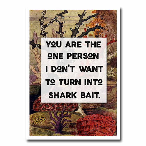 Shark Bait Greeting Card - 6 pack Wholesale