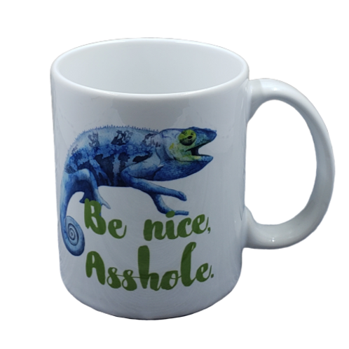 Be Nice Mug Set of 2