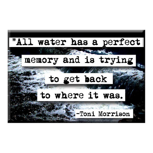 Toni Morrison Perfect Memory Magnet - Set of 3