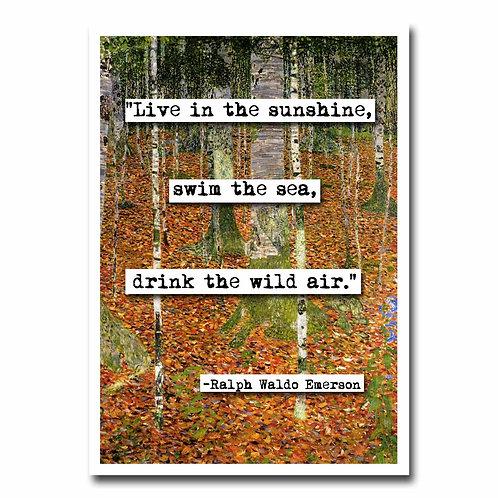 Ralph Waldo Emerson Sunshine Blank Greeting Card - 6 pack