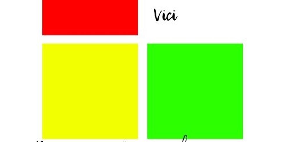 Международный конкурс вокального и хореографическиого искусства VENI. VIDI. VICI (онлайн)