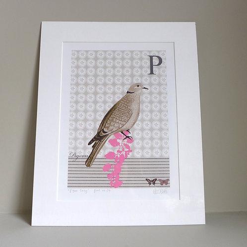 Pigeon Grey Artprint