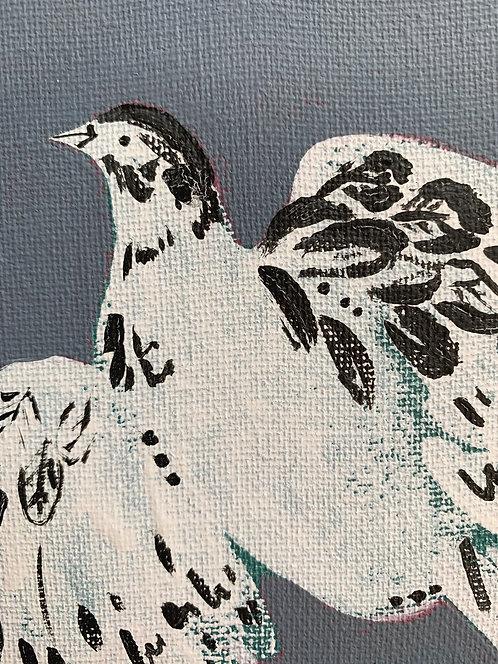 Little bird of hope