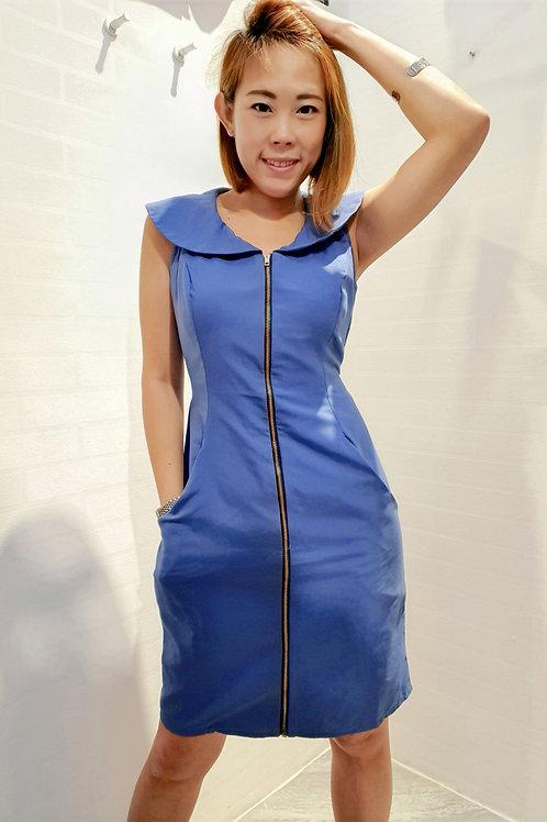 Peter Pan Collar Zipper Dress In Navy Blue