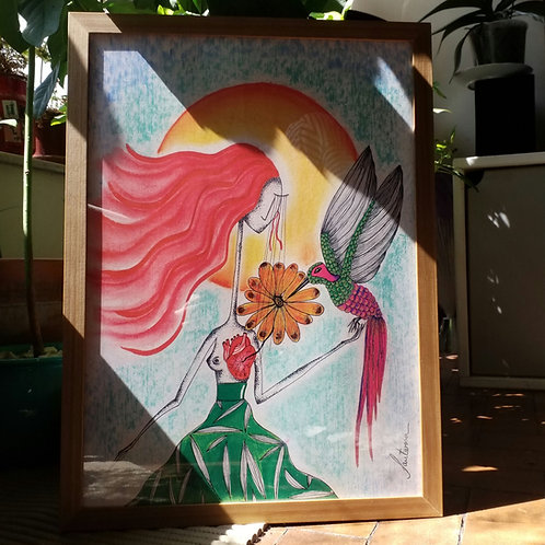 A3 Beija Flor - O mensageiro do Grande Espírito