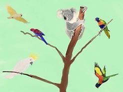 Australian birds.JPG