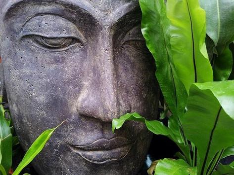 Sculpting the Brain Through Prayer or Meditation