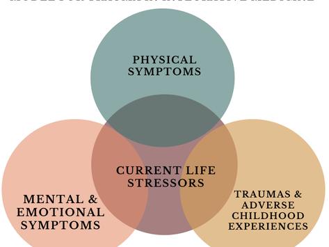 Trauma-Informed Integrative Medicinefor Providers