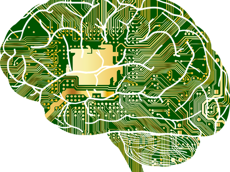 Train Your Way to a Better Brain - Cognitive Training and Plasticity