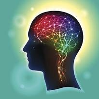 pretty-brain.jpg