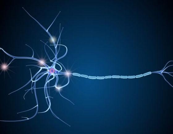 sephin_tratamiento_esclerosis_multiple-4