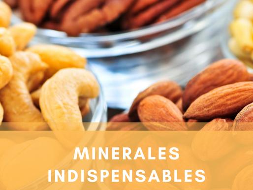 Minerales indispensables en tu salud