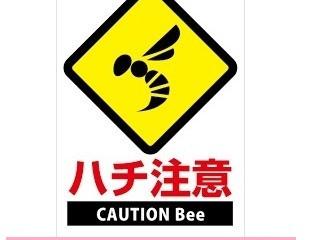 神奈川県川崎市高津区の蜂駆除(スズメバチ駆除、アシナガバチ駆除)専門業者