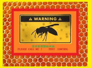 幸区のアシナガ蜂駆除作業はお任せください