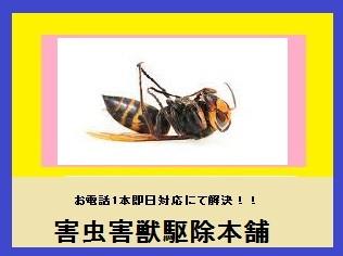 神奈川県川崎市麻生区の蜂駆除専門業者 害虫害獣駆除本舗